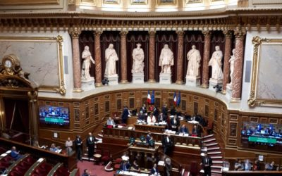 Mission sur la pédocriminalité: Le Sénat ouvre un espace participatif